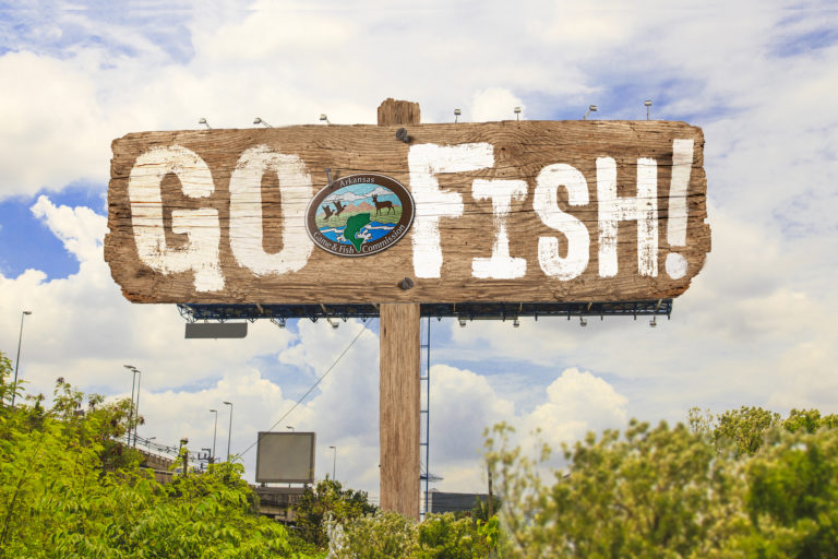 Go Fish Outdoor Board